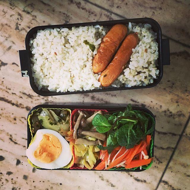 今日のお弁当♪#蘇大地 #sudach #田舎暮らし #田舎 #お弁当 #お弁当作り #お弁当部 #お弁当作り楽しもう部 (Instagram)