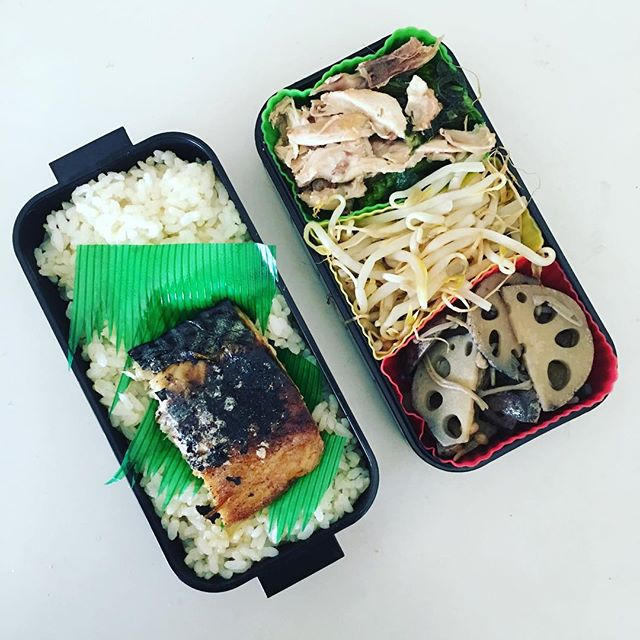 今日のお弁当♪#sudach #蘇大地 #お弁当 #お弁当記録 #お弁当日記 #お弁当作り #お弁当作り楽しもう部(Instagram)