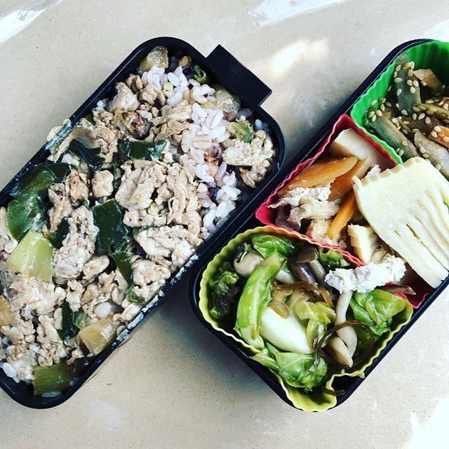 今日のお弁当♪#sudach #蘇大地 #お弁当 #お弁当記録 #お弁当作り楽しもう部 #お弁当日記(Instagram)