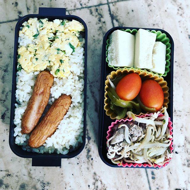 今日のお弁当♪#sudach #蘇大地 #お弁当 #お弁当記録 #お弁当作り楽しもう部 #お弁当の記録 #お弁当部 #お弁当生活 #お弁当日記 #お弁当作り(Instagram)