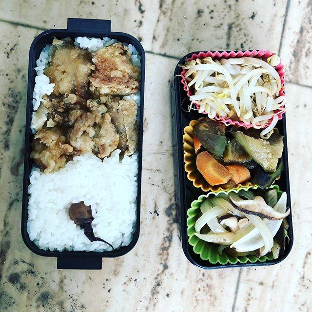 今日のお弁当♪#sudach #蘇大地 #お弁当 #お弁当記録 #お弁当作り楽しもう部 #お弁当の記録 #お弁当部 #お弁当生活 #お弁当日記 #お弁当作り #田舎 #田舎暮らし(Instagram)